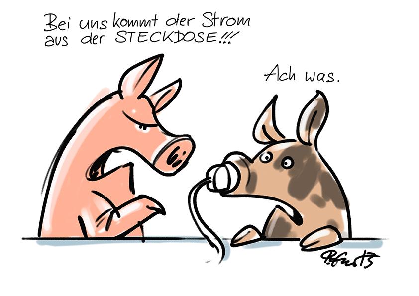 schweinenase